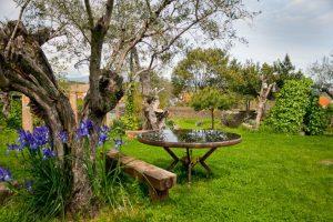Casa Rural La Solana en Monfragüe, Apartamento Rural en el norte de Extremadura