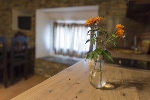 Salón cocina de Casa Rural en Monfragüe Apartamentos Rurales