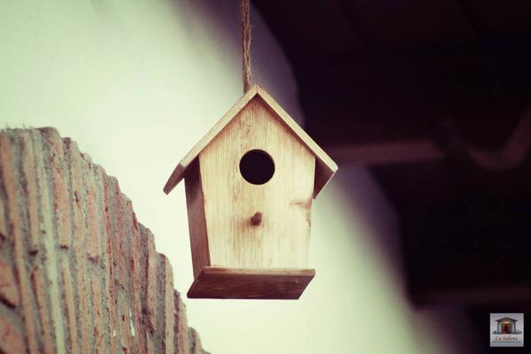 Cajas nido apartamentos rurales la solana - Casa rural monfrague ...